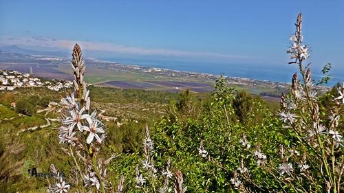 Vistas de la costa valenciana