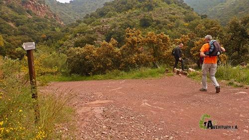 Itinerario Morado Nº5
