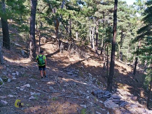 Bajada del Pico Pina